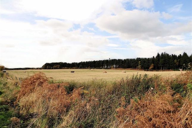 Thumbnail Land for sale in Mulben, Keith