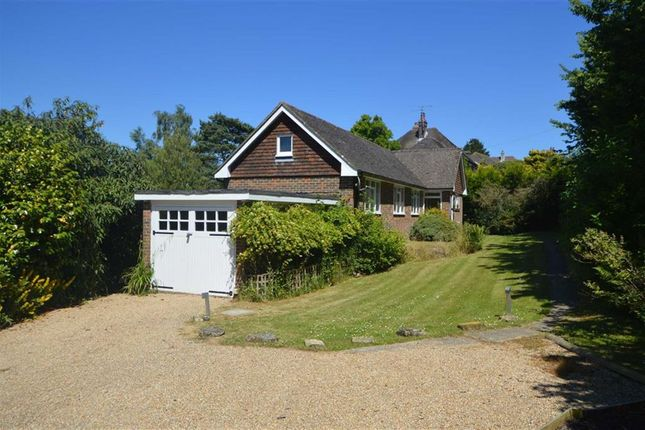 Thumbnail Detached bungalow to rent in Church Road, Rotherfield, Crowborough