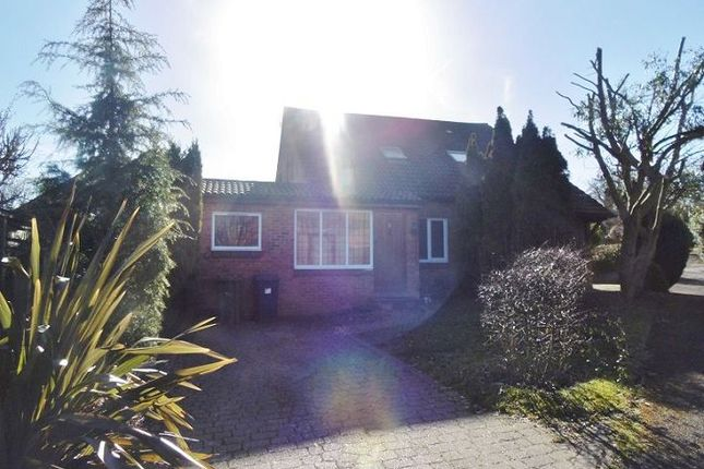 Thumbnail Property to rent in Van Dyck Close, Basingstoke