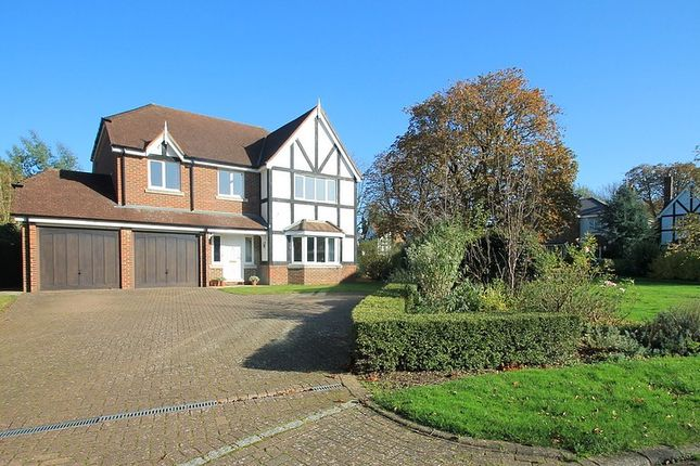Thumbnail Property to rent in Foxon Close, Caterham