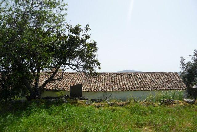 Land for sale in Portugal, Algarve, Sao Bras De Alportel