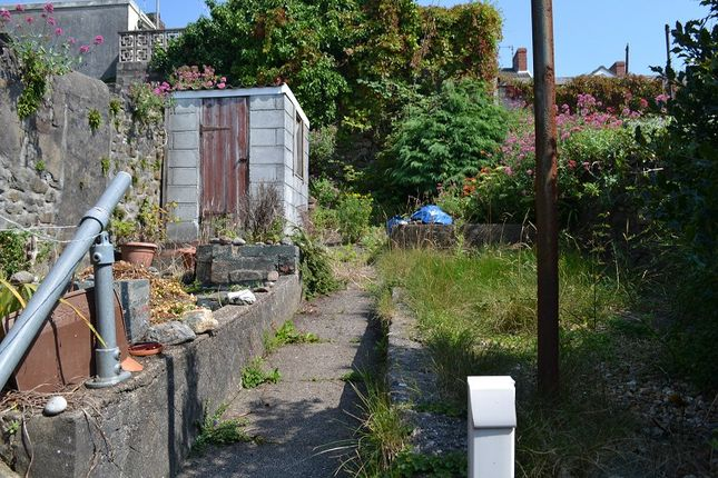 Rear  Garden of Middleton Street, St. Thomas, Swansea SA1