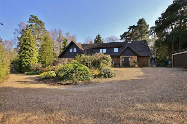 Thumbnail Detached house for sale in Common Road, Ightham, Sevenoaks