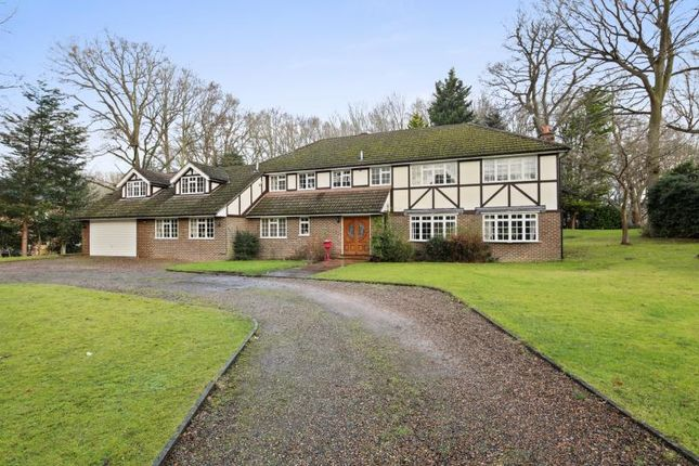 Thumbnail Property to rent in Albany Close, Blackhills, Esher, Surrey