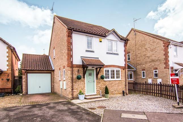 Thumbnail Detached house for sale in Lutea Close, Laindon, Basildon
