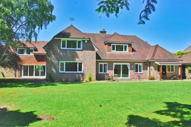 Thumbnail Detached house for sale in Tilebarn Lane, Brockenhurst