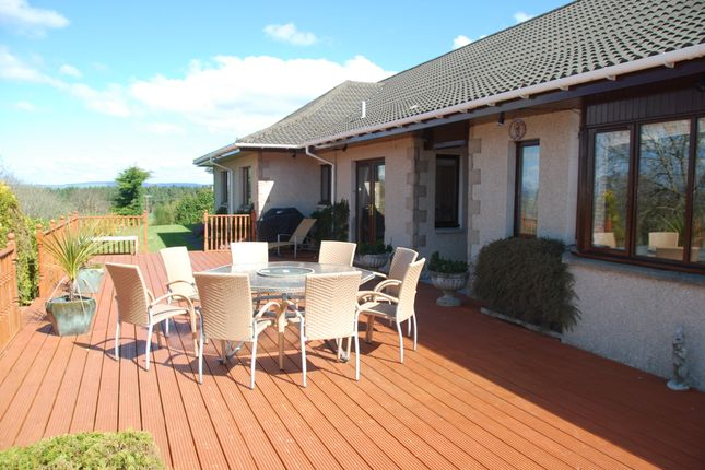 Thumbnail Bungalow to rent in Hillside, Inverness
