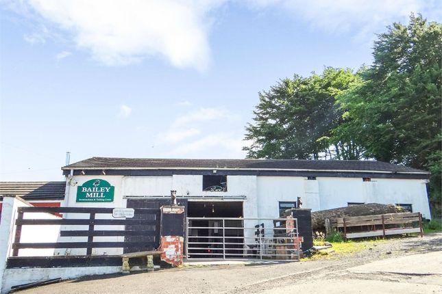 Thumbnail Detached house for sale in Newcastleton, Newcastleton, Cumbria