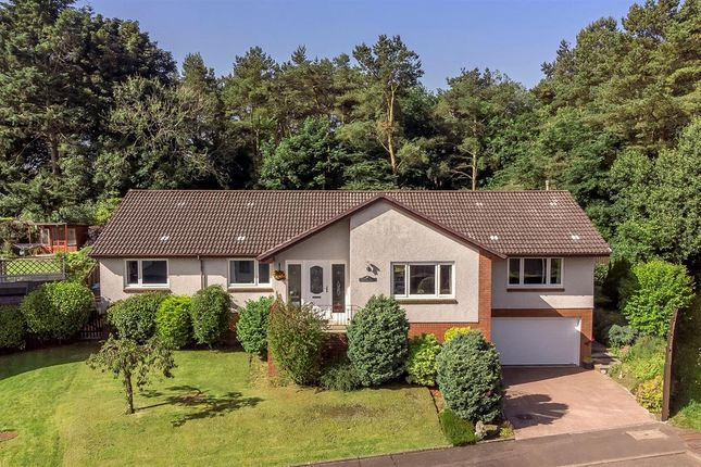 Thumbnail Bungalow for sale in Eardley Court, Glenrothes, Glenrothes