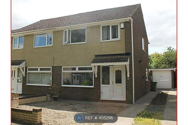 Thumbnail Semi-detached house to rent in Angrove Close, Yarm