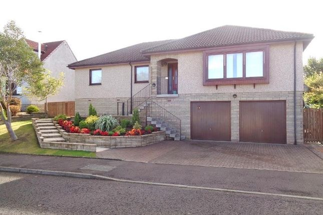 Thumbnail Detached house to rent in Hogarth Drive, Cupar