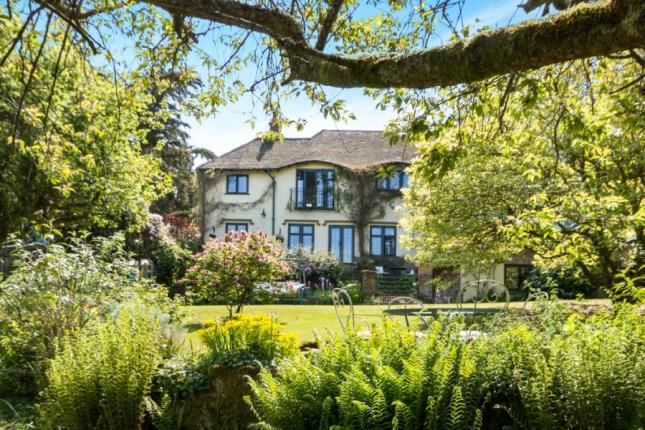 Thumbnail Detached house for sale in Haslemere, Surrey, Swan Barn Road