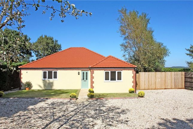 Thumbnail Detached bungalow for sale in Dick O'th Banks Road, Crossways, Dorchester, Dorset