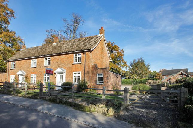 Thumbnail Semi-detached house to rent in Beech Green Lane, Withyham, Hartfield