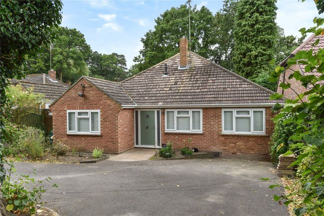 Thumbnail Detached bungalow for sale in School Hill, Sandhurst, Berkshire