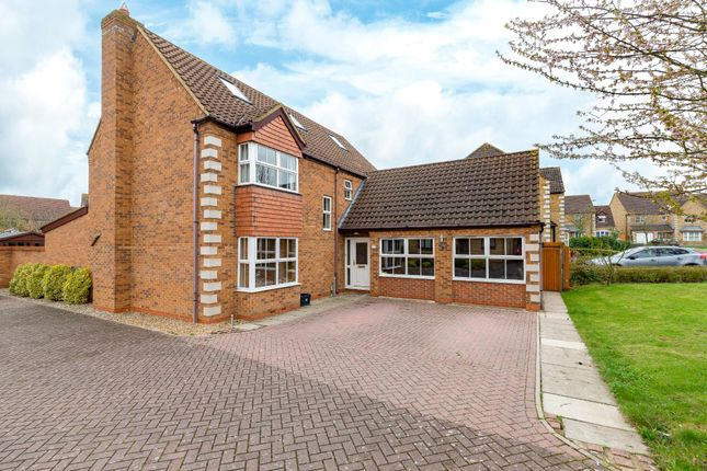 Thumbnail Detached house for sale in Corvus Close, Royston