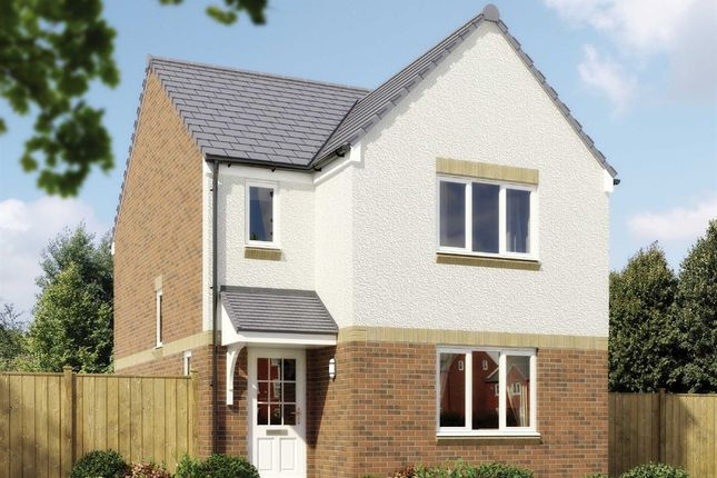 "Thumbnail Detached house for sale in ""The Elgin"" at Strath Brennig Road, Smithstone, Cumbernauld"