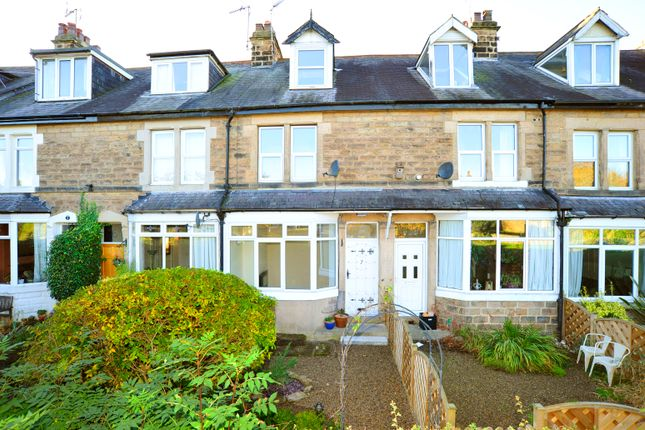 Thumbnail Town house to rent in Elm Tree Avenue, Harrogate