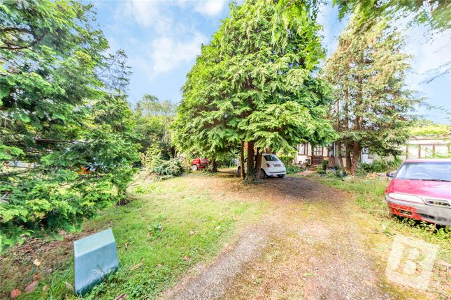 Thumbnail Bungalow for sale in Brackendale, Billericay, Essex