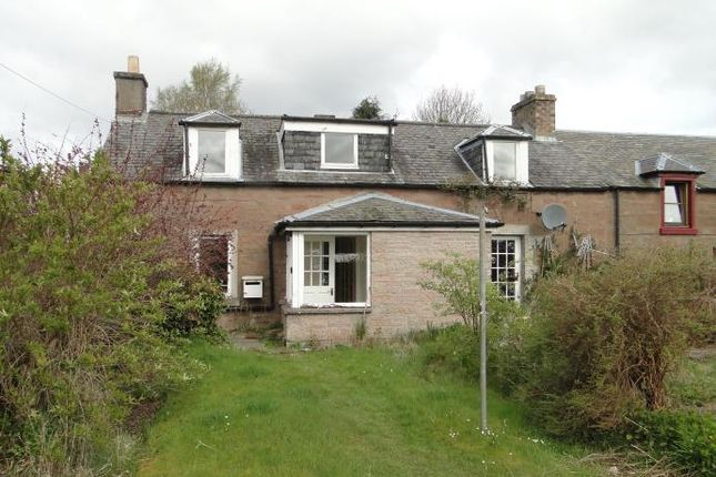 Thumbnail Cottage to rent in Dilkusha, Leitfie Terrace, New Alyth