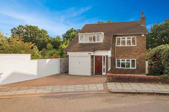 Thumbnail Detached house to rent in Folkington Corner, London