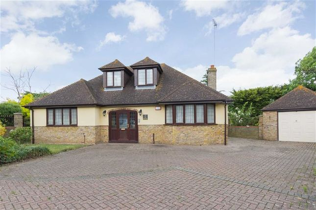 Thumbnail Property for sale in The Paddocks, Cliftonville, Margate