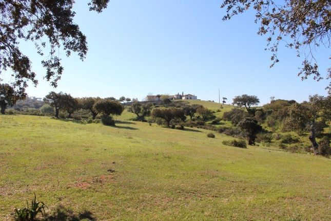 Thumbnail Farm for sale in Almodôvar, Beja, Portugal