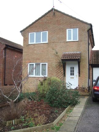 Thumbnail Link-detached house to rent in Mead Fields, Bridport, Dorset