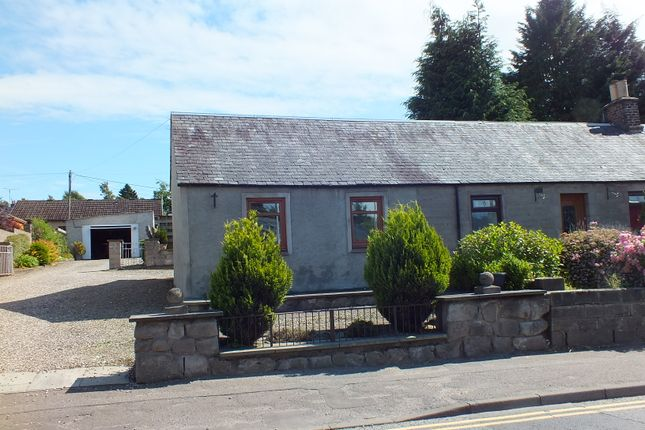 Thumbnail Semi-detached bungalow to rent in Perth Road, Scone