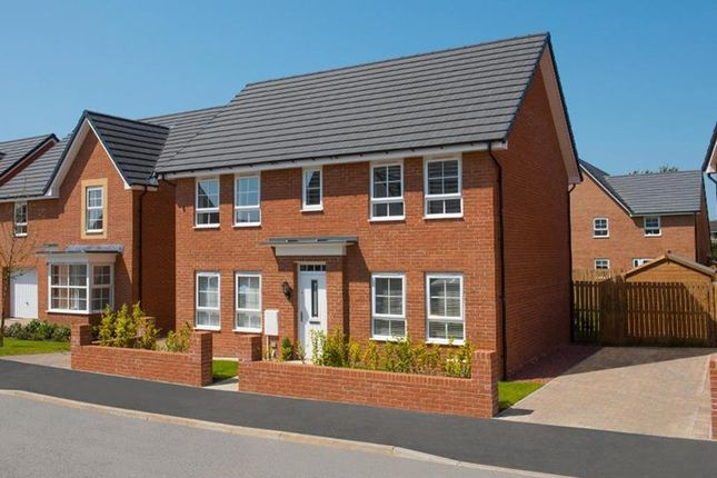 "Thumbnail Detached house for sale in ""Thornbury"" at Dearne Hall Road, Barugh Green, Barnsley"