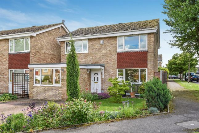 Thumbnail Detached house for sale in Little Headlands, Bedford