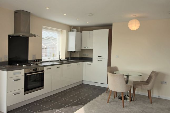 Thumbnail Flat to rent in Weavers Close, Eastbourne