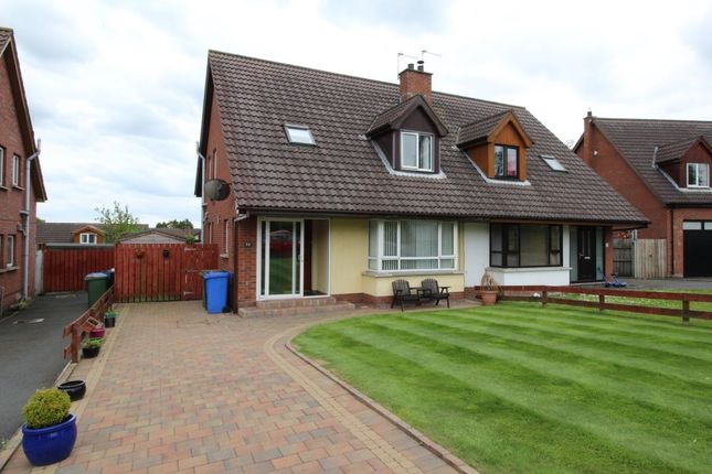 Thumbnail Semi-detached house for sale in Marlo Heights, Bangor