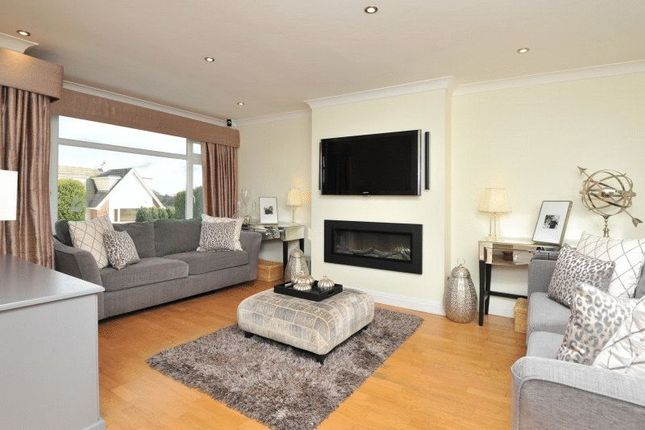 Living Room of Drake Avenue, Torquay TQ2