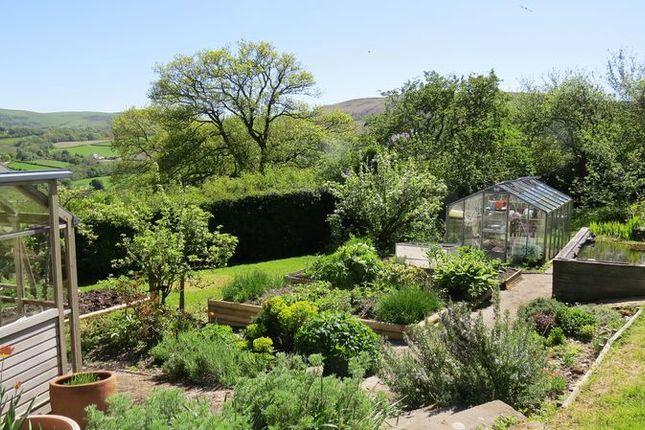 Kitchen Garden of Bryn Eithin Road, Afonwen, Mold CH7