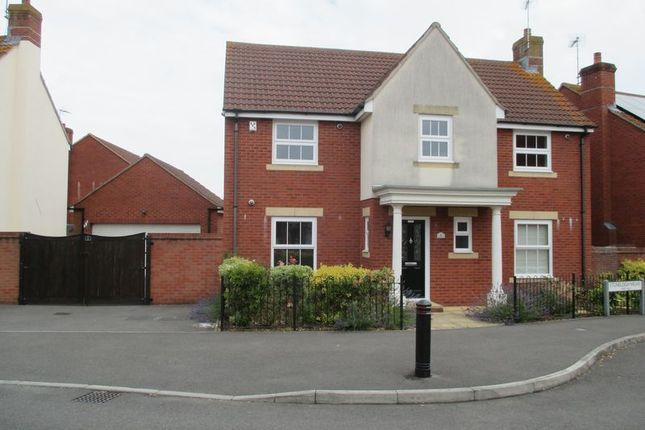 Thumbnail Detached house to rent in Stoneleigh Mews, Yeovil