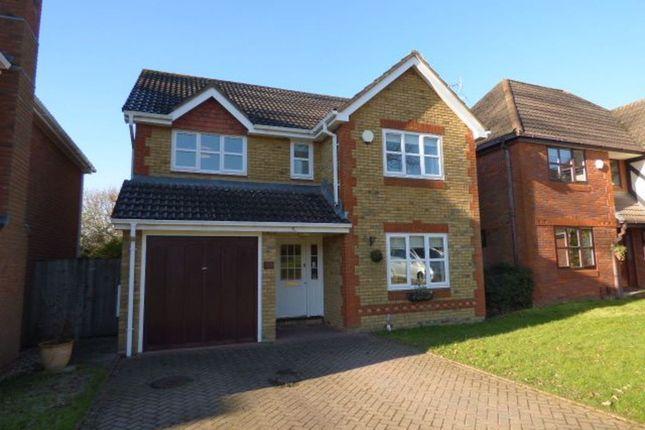 Thumbnail Property to rent in Twycross Road, Wokingham