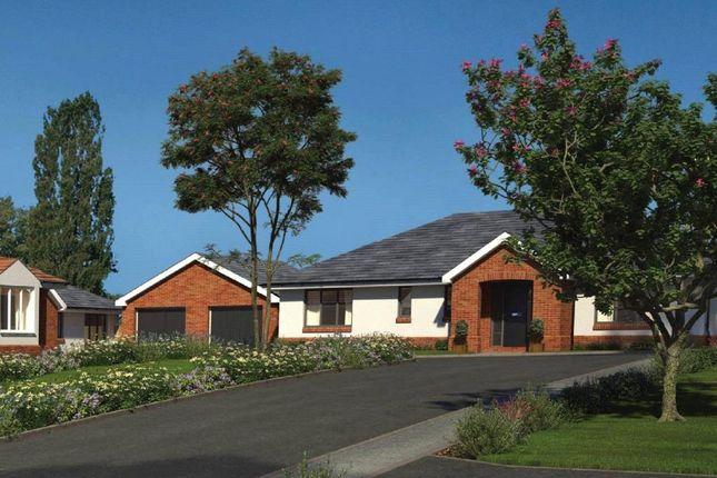 Thumbnail Detached bungalow for sale in Moonhill Copse, West Clyst, Exeter, Devon