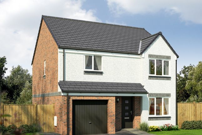 """Thumbnail Detached house for sale in """"The Balerno"""" at Rosslyn Street, Kirkcaldy"""