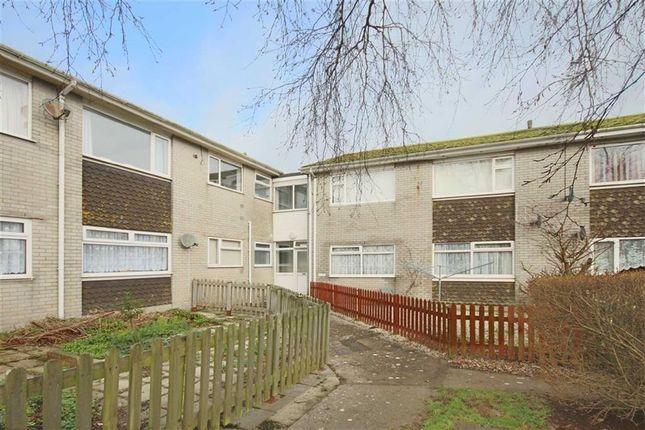 Thumbnail Flat for sale in Pillar Avenue, Furzeham, Brixham