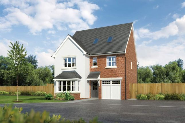 "Thumbnail Detached house for sale in ""Longrush"" at Padgbury Lane, Congleton"