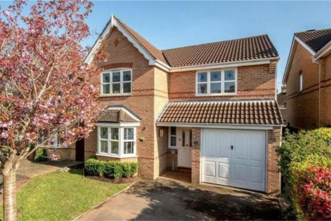 Thumbnail Detached house for sale in Craig Lea, Taunton