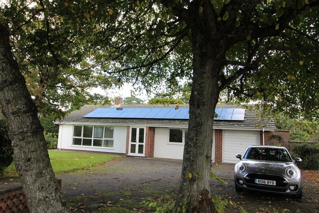 Thumbnail Detached bungalow to rent in Wharncliffe Road, Highcliffe, Christchurch