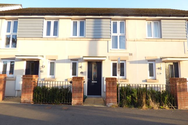 Thumbnail Terraced house to rent in Tillhouse Road, Cranbrook, Exeter
