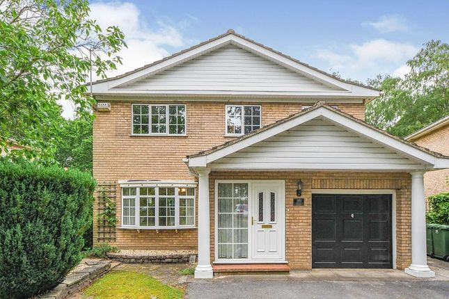 Thumbnail Detached house to rent in Shaftesbury Avenue, Lincoln