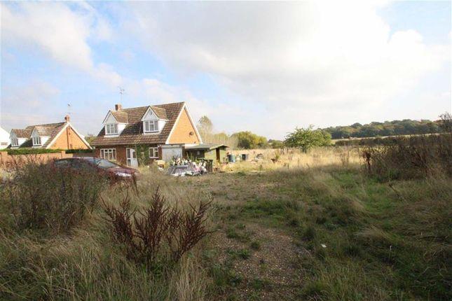 Thumbnail Detached house for sale in New Farm Cottage, Abridge, Essex