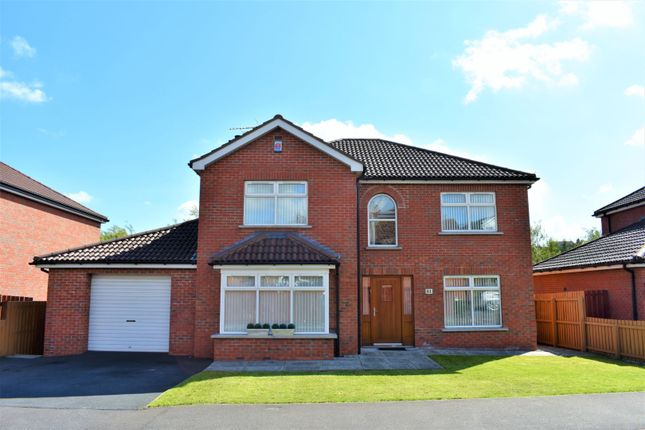 Thumbnail Detached house for sale in Richmond Drive, Tandragee