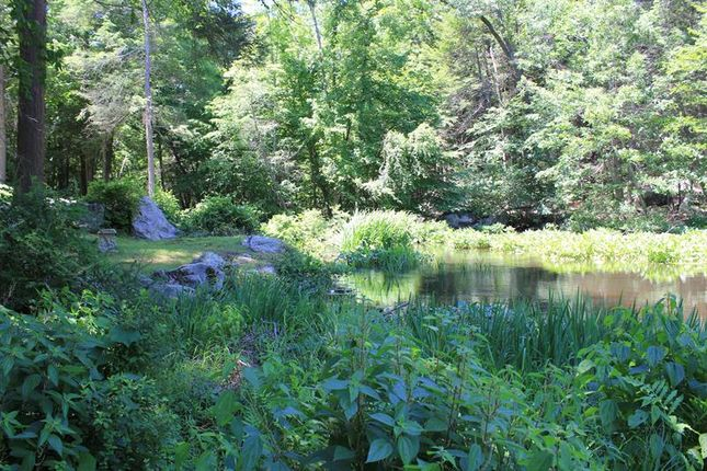 Thumbnail Land for sale in Lower Trinity Pass Road Pound Ridge, Pound Ridge, New York, 10576, United States Of America