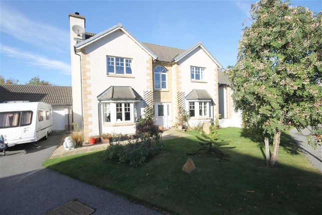 Thumbnail Detached house for sale in Covesea Grove, Elgin