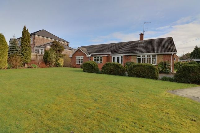 Thumbnail Detached bungalow to rent in Beech Hill Road, Swanland, North Ferriby